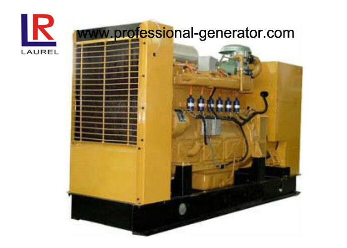 Low Consumption 100kw Natural Gas Electricity Generator for Alternative Energy Project